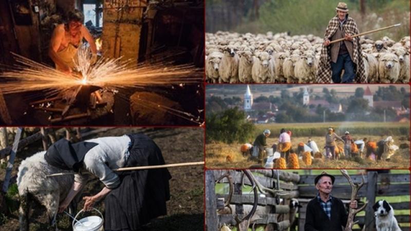 Despre munca, din lumea satului autentic